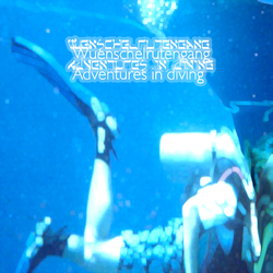[Schoenermusic#017] Wuenschelrutengang - Adventures in Diving