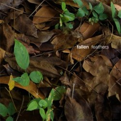 [RB076] Fallen - Feathers