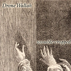 [wh138] Drone Wallah - Womble-cropped