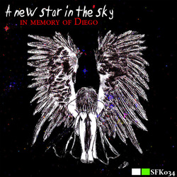 [sfk034] Various Artists - A New Star In The Sky