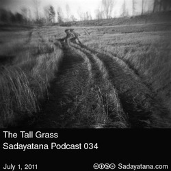 [sadayatana034] The Tall Grass