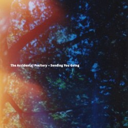 [RB101] The Accidental Psaltery  - Sending You Going