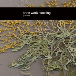 [enrmp214] Open Work Stocking - Guanine