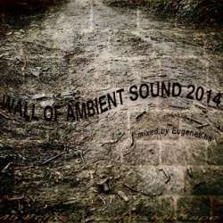 [45E035] Various Artists - Wall Of Ambient Sound 2014